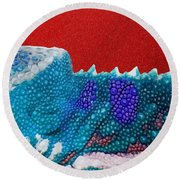 Turquoise Chameleon On Red Round Beach Towel