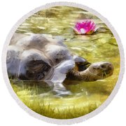 Turtle Takes A Swim Round Beach Towel by Ricky Dean