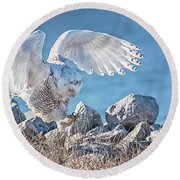 Two Point Landing Round Beach Towel