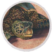 Round Beach Towel featuring the painting Honu At Rest by Darice Machel McGuire