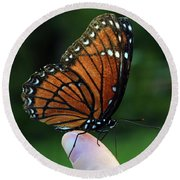 Viceroy Butterfly Round Beach Towel