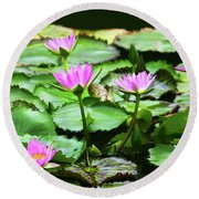 Round Beach Towel featuring the photograph Water Lilies by Anthony Jones