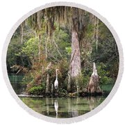 Weeki Wachee River Round Beach Towel