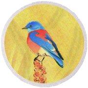 Western Bluebird Round Beach Towel