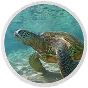 What Are You Lookin At Round Beach Towel by James Roemmling