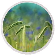 Wheat And Corn Flowers Round Beach Towel