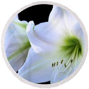 Round Beach Towel featuring the photograph White Amaryllis  by Saija Lehtonen