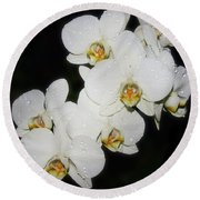 Round Beach Towel featuring the photograph White Orchid by Elvira Ladocki