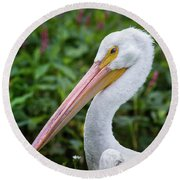 Round Beach Towel featuring the photograph White Pelican by Robert Frederick
