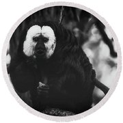 Round Beach Towel featuring the photograph White Saki by The 3 Cats