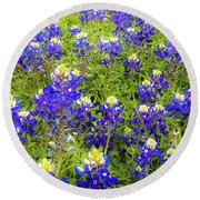 Wild Bluebonnets Blooming Round Beach Towel