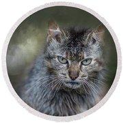 Wild Cat Portrait Round Beach Towel