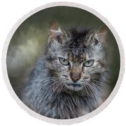 Wild Cat Portrait Round Beach Towel