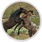 Wild Mustang Stallions Fighting Round Beach Towel