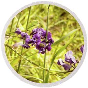 Round Beach Towel featuring the photograph Wildflowers IIi by Cassandra Buckley