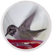 Round Beach Towel featuring the photograph Wings In Motion 2 by Anne Rodkin