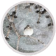 Winter Mockingbird Round Beach Towel