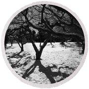 Round Beach Towel featuring the photograph Winter Shadows by Yulia Kazansky