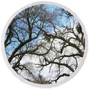 Round Beach Towel featuring the photograph Winter Trees At Fort Tejon Lebec California  by Floyd Snyder