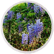 Round Beach Towel featuring the photograph Wisteria by Betty-Anne McDonald