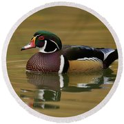 Round Beach Towel featuring the photograph Wood Duck by Doug Herr