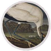 Wood Ibis Round Beach Towel by John James Audubon