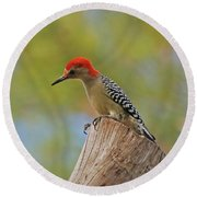 Round Beach Towel featuring the digital art 1- Woodpecker by Joseph Keane