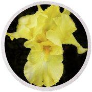 Round Beach Towel featuring the photograph Yellow Iris by Susan Crossman Buscho