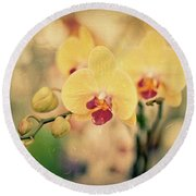 Round Beach Towel featuring the photograph Yellow Orchids by Ana V Ramirez