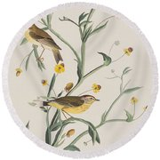 Yellow Red-poll Warbler Round Beach Towel