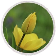 Round Beach Towel featuring the photograph Yellow Tulips by Sandy Keeton