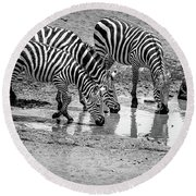 Zebras At The Watering Hole Round Beach Towel