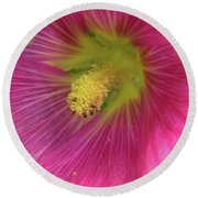 Round Beach Towel featuring the photograph Pink Flower by Elvira Ladocki