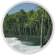 Round Beach Towel featuring the photograph 100903-a2 by Ed Cooper Photography