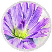 10889 Purple Lily Round Beach Towel