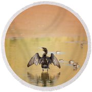 Round Beach Towel featuring the photograph Neotropic Cormorant by Tam Ryan