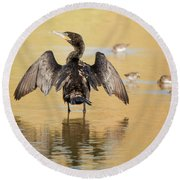 Neotropic Cormorant Round Beach Towel by Tam Ryan