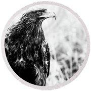 Portrait Of Bird Of Prey  Round Beach Towel