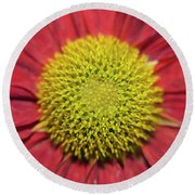 Red Flower Round Beach Towel by Elvira Ladocki