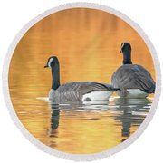 Round Beach Towel featuring the photograph Canada Geese by Tam Ryan