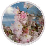 Silicon Valley Cherry Blossoms Round Beach Towel