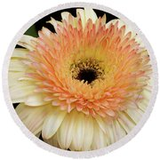 Beautiful Gerber Round Beach Towel by Elvira Ladocki