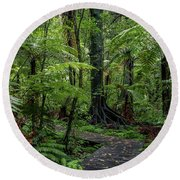 Round Beach Towel featuring the photograph Forest Boardwalk by Les Cunliffe