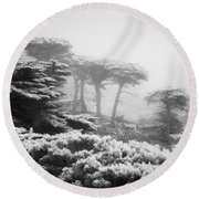 17 Mile Drive Cyprus Tress  Round Beach Towel