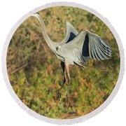 Round Beach Towel featuring the photograph Great Blue Heron by Tam Ryan