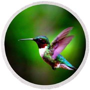 1846-007 - Ruby-throated Hummingbird Round Beach Towel