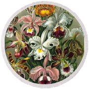 1904 Orchids Art Forms Of Nature Print Round Beach Towel