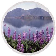 Round Beach Towel featuring the photograph 1a6345 Mt. Konocti Reflect Ca by Ed Cooper Photography