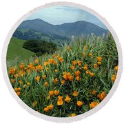 1a6493 Mt. Diablo And Poppies Round Beach Towel