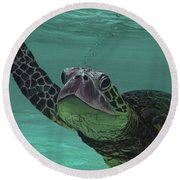Round Beach Towel featuring the painting Aloha From Maui by Darice Machel McGuire